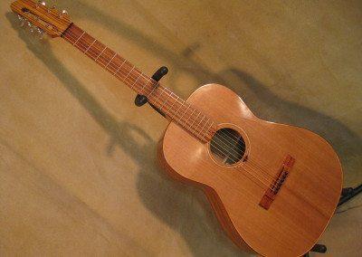 Zebrawood/Cedar Parlor guitar