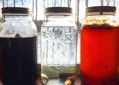 Natural dye experiments